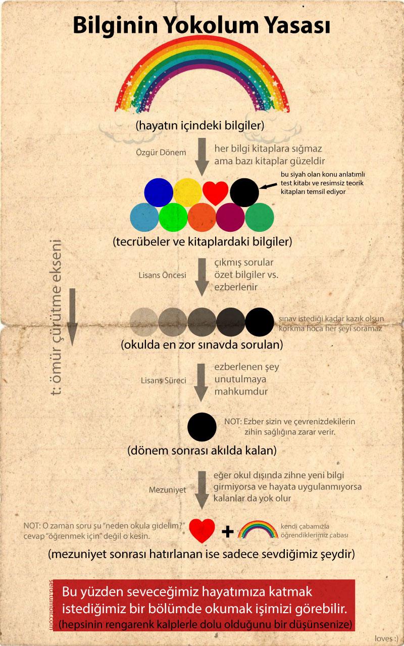 bilginin-yokolum-yasasi